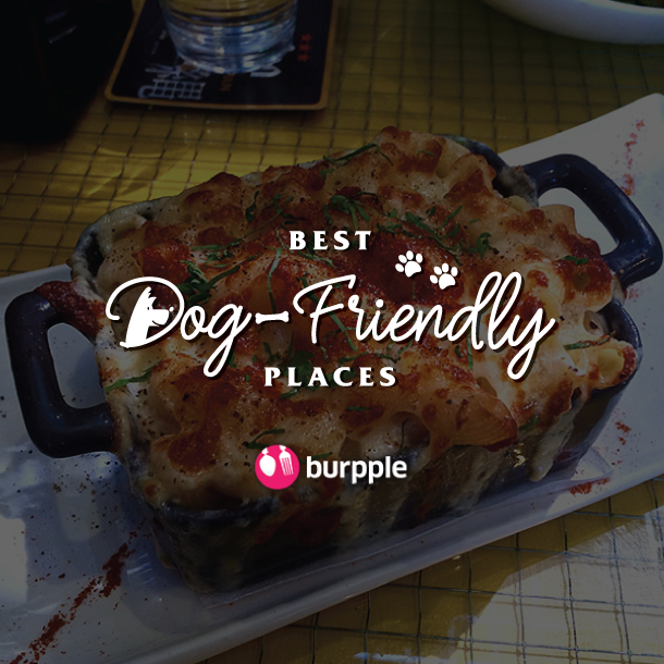 Best Dog-Friendly Cafes and Restaurants in Singapore