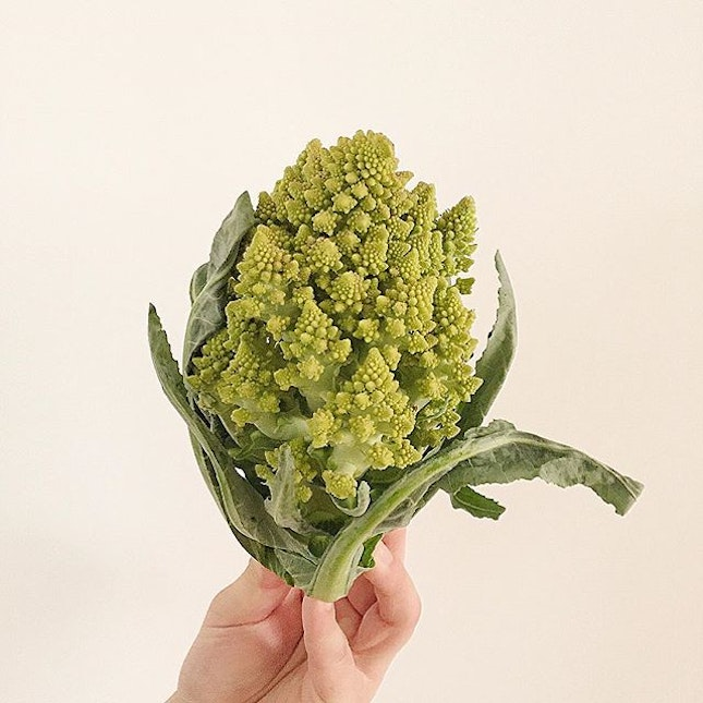 #Romanesco Broccoli  To be honest, I can not recall it name at first so I type 'weird broccoli' on Google search and come up it name in 0.3 sec 😂Bought a couple at the #tongchongstreetmarket yesterday, simply just boil it and combine with other root vegetables, fresh mushroom & roasted nut.