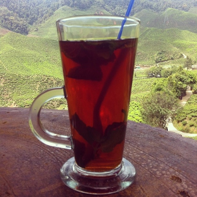 #mint #tea #cameronhighlands