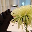 Flowers Of Cafés