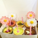 Handmade gum paste daisies on assortment flavored egg tarts