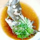 港式蒸西星斑 HK Style Steamed Grouper