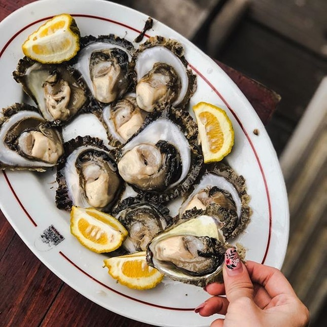 Fresh oysters for you to sample on the spot, squeeze a few drops of fresh lemon to savor the freshest oysters the Adriatic Sea can offer!