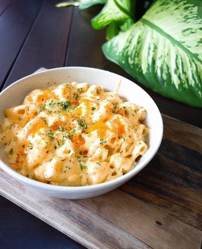 Mentaiko mac and cheese..