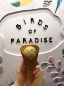 Birds of Paradise Gelato Boutique
