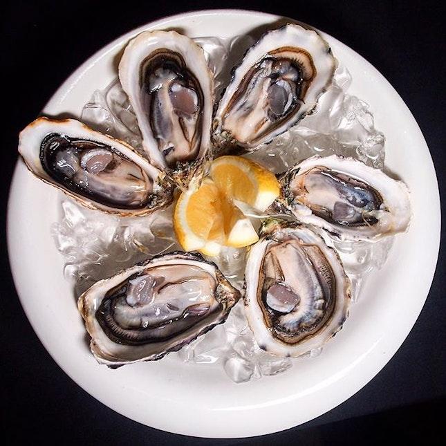 Half Dozen Fresh Oysters ($15++)