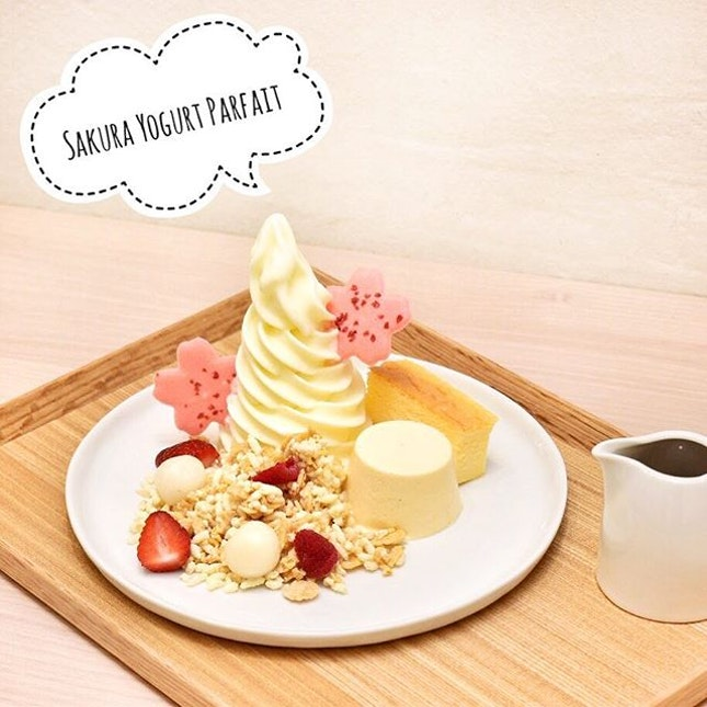 Delicious soufflé cheese cake together with vanilla pudding, dango, sakura syrup and berries, I'm pretty sure Sakura Yogurt Parfait S$14.90 is a popular hit with many.