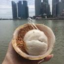Classic Coconut Icecream