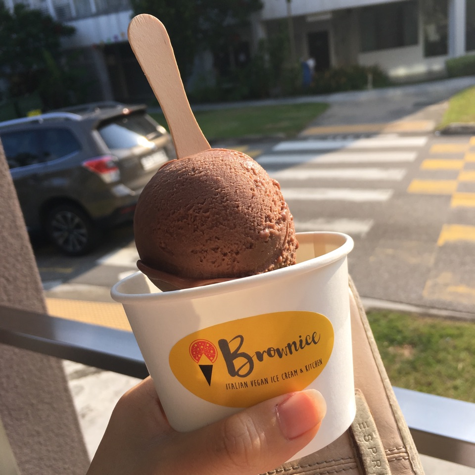 Brownice Ice Cream