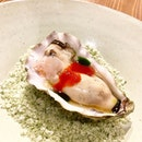 Signature Irish Oyster .