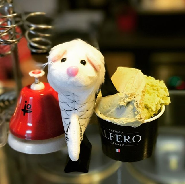 Artisan Alfero Gelato - Well hidden gem but what a find!