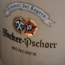 German Draft Beer $22 (1for1)