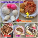 Review on Teochew handmade baos