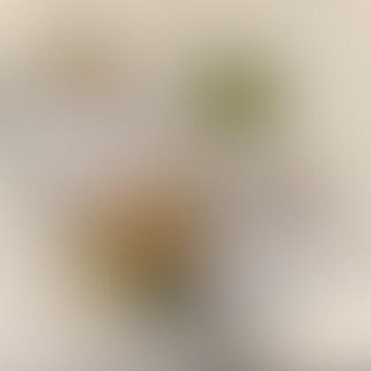 Hakka Lei Cha With Mini Soup Set ($6.50 + $4)