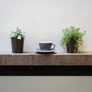 Cappuccino [~$5]