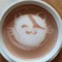 The Cat Cafe (Bugis)