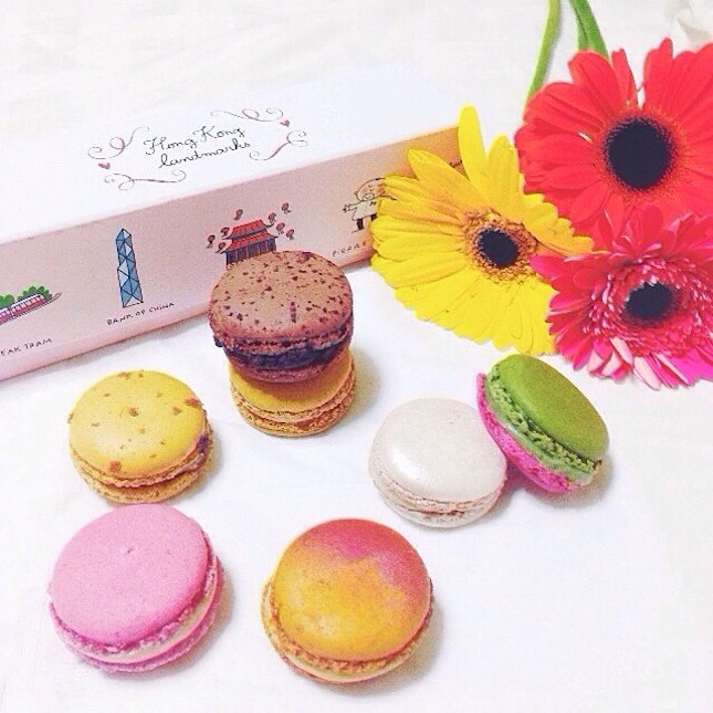 Only the best macarons in the world!!