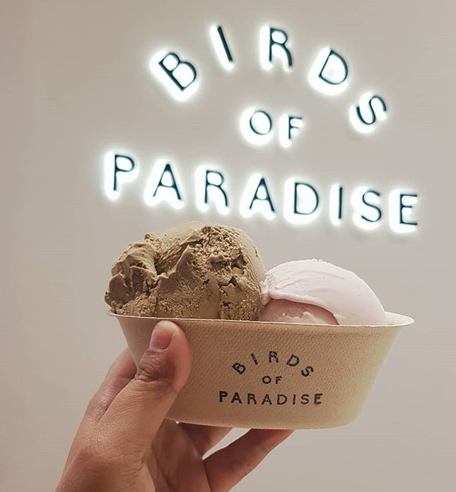 If you are a fan of gelato, you should definitely try Birds of Paradise!