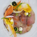 Carpaccio, Cured hamachi, aged balsamic, citrus salsa avocado, courgette.