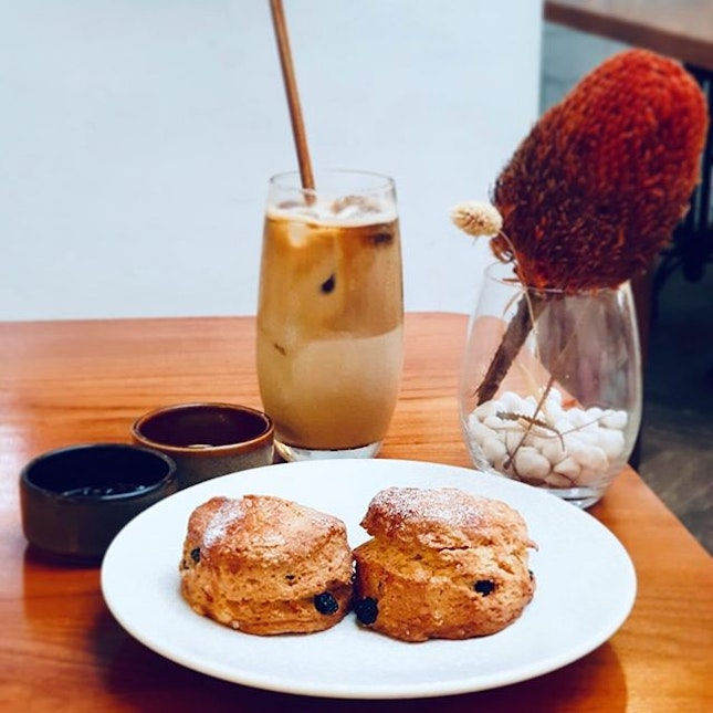 Craving for some blueberry scones.