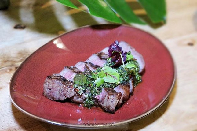 Can't get enough of chimichurri sauce with more meats!