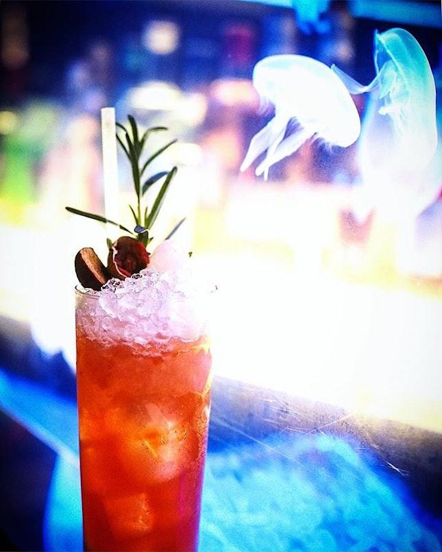 Jellyfish & Cocktails.