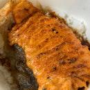 Spicy Salmon Mentai Don