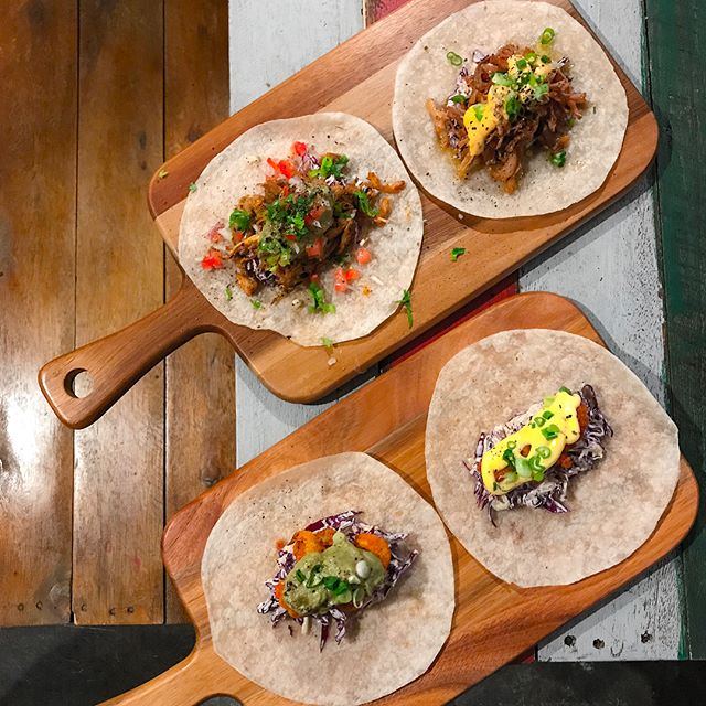 The Hangar - HOSTED TASTING - Appetisers - Tacos: Smoky Pulled Pork, Beer Battered Barramundi, Chicken Avocado, Crunchy Cauliflower (V), Steak & Horseradish.