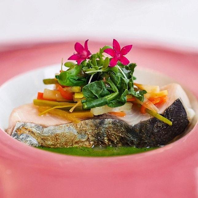 Sawara fish, shungiko sauce, onion confit, crunchy vegetables.