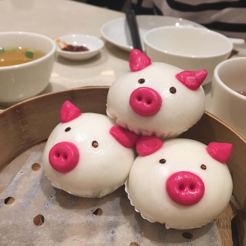 Cute Piggies!