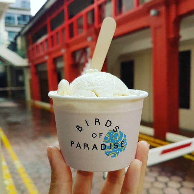 Spiced pear gelato 🍐🍦 Even though I live so ridiculously close to Birds of Paradise, I actually only managed to try it for the first time today!