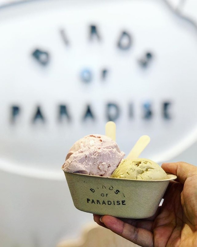 Double cup Pistachio and Strawberry Basil.