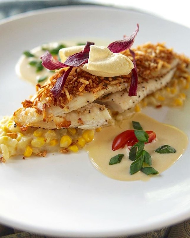 Snapper Corn Fricassee with White Wine Cream and Tomato Confit 🔻  This masterpiece is really taking culinary into another level.