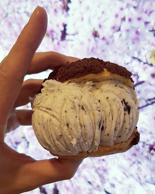 Cream puff with cookie & cream ice-cream  The cream puff has a crispy outer layer which goes really well with the ice-cream but the ice-cream taste like those $1 waffle/bread ice-cream which you can find at the roadside of orchard.