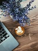Posh Coffee Roastery