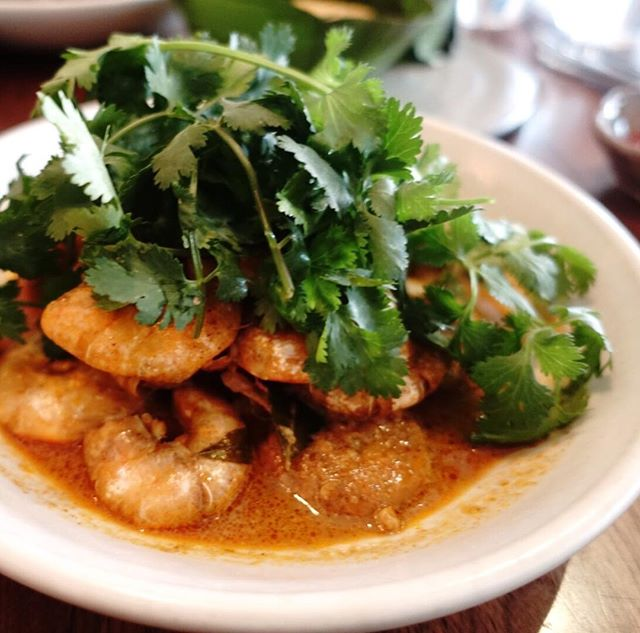 Underneath all the fresh coriander are Chilli prawns.