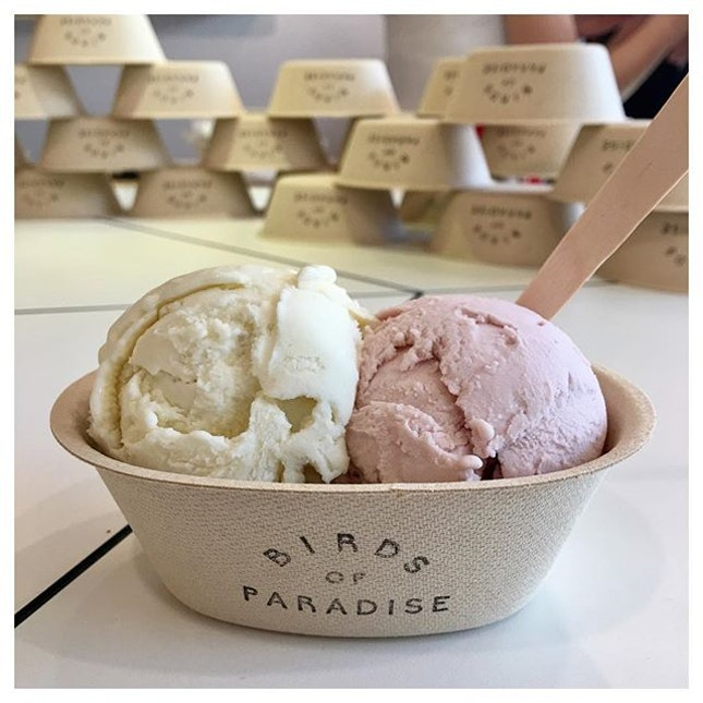 Strawberry Basil and Spiced Pear 🍦💕 Dropped by BOP to try their botanical gelato.
