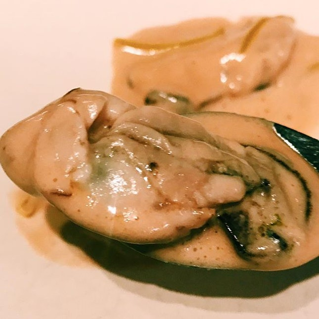 5.6 bicol express 'guindillo' oyster.