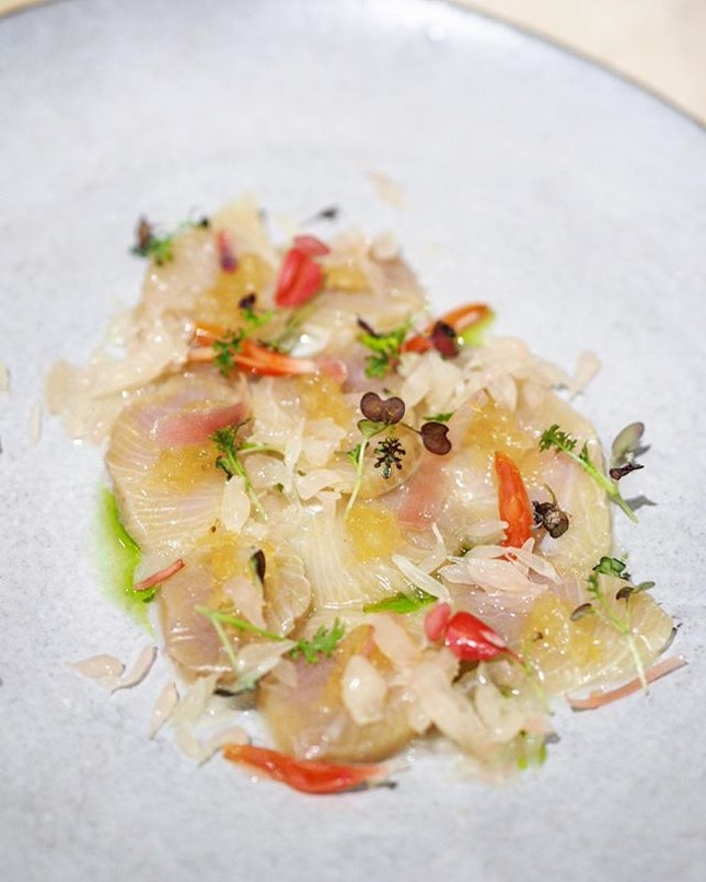 [Open Farm Community] - Citrus Cured Hamachi ($20), which is a sushi-grade Kingfish garnished with pickled ginger blossoms and shredded green papaya from OFC's garden.