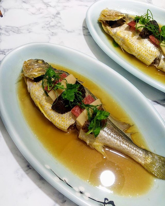 [Crystal Jade Jiang Nan] - Also known as the 'land of rice and fish', Steamed Yellow Croaker with Chinese Wine 酒香黄花鱼 ($28.80 per portion, about 400g) is a less commonly known Jiangnan specialty.