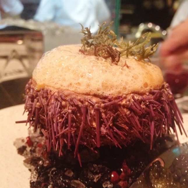 sea urchin and crab bisque ($18+)