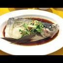 Hong Kong Style Steamed Fish Head