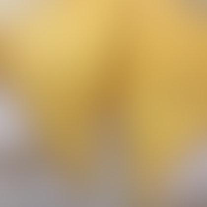 Golden Lava Toast