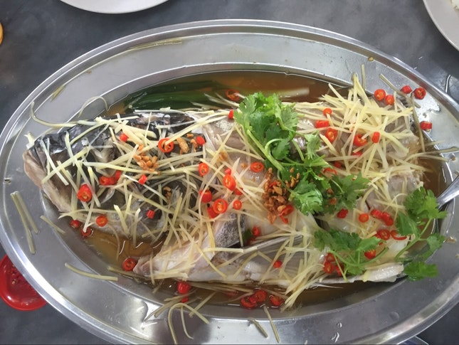 For Succulent Steamed Fish Head